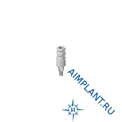WP titanium/plastic abutment Adin