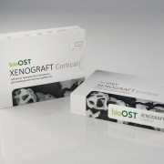 XENOGRAFT Cortical