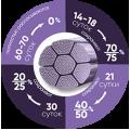 Полиглактин 910 фиолетовый МедПГА-910